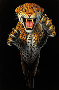 Frightening Originals - Leaping Leopard by Steve Bridger