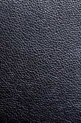 Blank Photos - Leather Background by Carlos Caetano