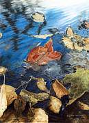 Marshall Bannister - Leaves In Puddle 1