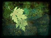 Brown Tones Posters - Leaves on Green Poster by Ann Powell