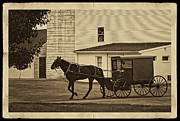 Horse And Buggy Digital Art Posters - Leaving the Farm Poster by Priscilla Burgers