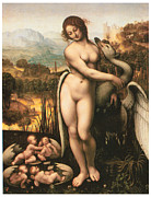 Leda Prints - Leda and the Swan Print by Cesare Da Sesto
