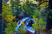 Aspen Trees Prints - Lee Vining Creek Falls Print by Scott McGuire
