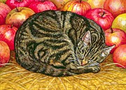 Sleeping Cats Posters - Left Hand Apple Cat Poster by Ditz