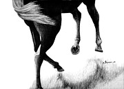 Bay Horse Drawings - Left Turn by Kayleigh Semeniuk