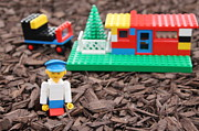 Teresa Thomas - Lego Home