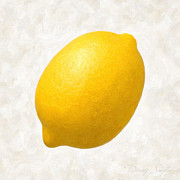 Fruit Paintings - Lemon  by Danny Smythe