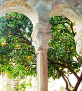 Ann Johndro-Collins - Lemon Tree Very...