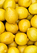 Lemons Metal Prints - Lemons 02 Metal Print by Rick Piper Photography
