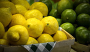 Farm Stand Photo Posters - Lemons and Limes Poster by Julie Palencia