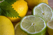 Taste Originals - Lemons and Limes by Tracy  Hall