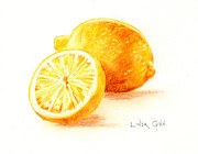 Lemon Drawings - Lemons by Linda Ginn