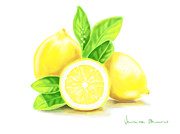 Fruit Digital Art Posters - Lemons Poster by Veronica Minozzi