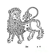 Science Source - Leo Constellation Zodiac Sign 1482