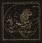 Leo Constellations, 1829 Print by Science Photo Library