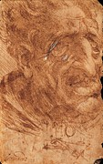 Sepia Ink Photos - Leonardo Da Vinci, Head Of An Old Man by Everett