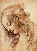 Middle Ages Drawings Prints - Leonardo Sketch of a Womans Head Print by