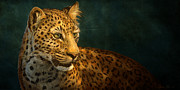 Cat Digital Art - Leopard by Aaron Blaise