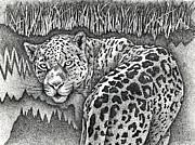 Brian Gilna - Leopard