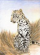 Leopard Print Paintings - Leopard Cub In Grass by Marshall Bannister