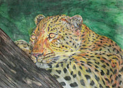American Food Paintings - Leopard by Dylan Williams