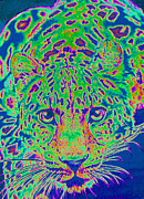 Cat Eyes Digital Art - Leopard Eyes Green by Jane Schnetlage
