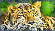 Fast Paintings - Leopard portrait  by Odon Czintos