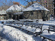 Park Benches Framed Prints - Let It Snow Indeed  Framed Print by Maritza Melendez
