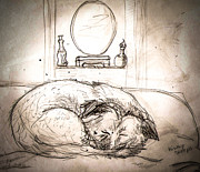 Sleeping Dog Drawings Prints - Let Sleeping Dogs Lie Print by Christy Usilton
