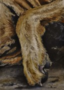 Dog Paw Paintings - Let Sleeping Dogs Lie by Joy Bradley                   DiNardo Designs