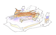 Sleeping Dog Drawings Prints - Let Sleeping Dogs Lie Print by Molly Brandenburg