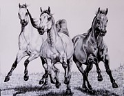 Horses Drawings - Let the Dinner Bell Ring by Cheryl Poland