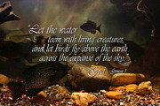 Nature Posters Prints - Let the Water Print by Linda Fowler