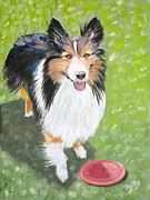Collie Painting Framed Prints - Let Us Play  Border Collie Framed Print by Phyllis Kaltenbach