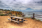 Rancho Palos Verdes Framed Prints - Lets Picnic Framed Print by Heidi Smith