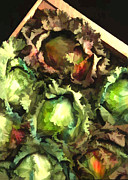 Lettuce Painting Prints - Lettuce Entertain You Print by Elaine Plesser