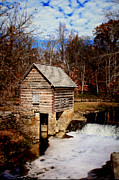 Levi Metal Prints - Levi Jackson Park Water Mill Metal Print by Stephanie Frey