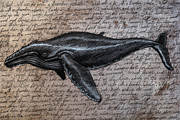 Whale Metal Prints - Leviathan Metal Print by Mark Zelmer