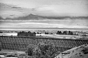 Lewistown Prints - Lewistown Trestle Black and White Print by Tommy Ray Fowler