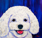 White Poodle Framed Prints - Lexi Framed Print by Debi Pople