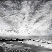 Beach Art Photos - Liberta by Photodream Art