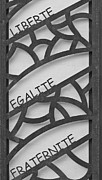 Masonic Framed Prints - Liberte Egalite Fraternite in black and white Framed Print by Georgia Fowler