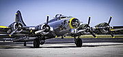 Ww Ii Framed Prints - LIBERTY BELLE B17 FLYING FORTRESS v3 Framed Print by F Leblanc