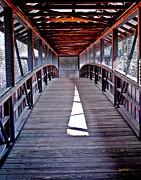 Jeff McJunkin - Liberty Bridge Swan Lake