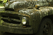 Covered Head Framed Prints - Lichen Covered Truck 3 Framed Print by Douglas Barnett