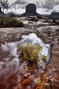 Puddle Digital Art Metal Prints - Life Giving Water Metal Print by Ellen Lacey