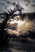 Vision Mixed Media Framed Prints - Life is a Journey Framed Print by Gerlinde Keating - Keating Associates Inc