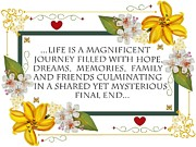 Anne Norskog - Life is a Magnificent...