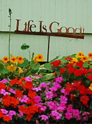 Affirmation Posters - Life is Good Poster by Mamie Gunning