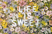 Deborah Waters - Life is Sweet